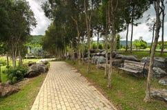 Via di pietra e un banco di legno in un parco sotto gli alberi verdi Fotografia Stock