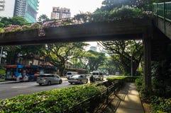 Via di Singapore Immagini Stock Libere da Diritti