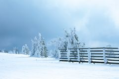 Via di Snowy con il recinto di legno Immagine Stock Libera da Diritti