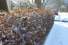 Via di Snowy del settore privato nella città Mese di gennaio fotografie stock libere da diritti