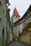 Via di vecchia Tallinn fotografia stock libera da diritti