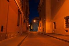 Via di Vilnius alla notte Immagini Stock