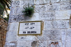 Via Dolorosa street sign, Jerusalem Royalty Free Stock Images