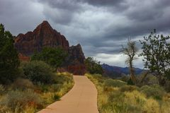 Via e montagne rosse a Zion National Park-Utah Fotografia Stock Libera da Diritti