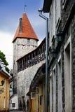 Via e torre di un muro di cinta Vecchia città Tallinn, Estonia immagini stock libere da diritti