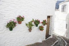 Via graziosa calma con il canale idrico ed i vasi da fiori nel wal Fotografia Stock