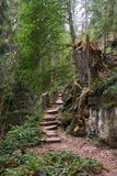 Via il ferrata alla cascata di Sankenbach in Baiersbronn fotografia stock