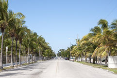 Via in Key West Fotografie Stock