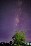 Via Látea e árvore, galáxia Fotos de Stock