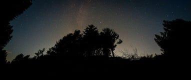Via Látea sobre as copas de árvore Imagens de Stock