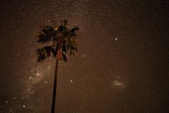 Via Lattea con una palma in Nyepi in Bali fotografia stock libera da diritti