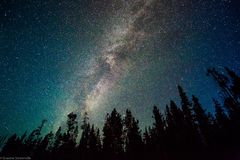 Via Lattea sopra Yellowstone Fotografie Stock