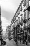 Via Maqueda - Palermo. Black and white of Via Maqueda - Palermo - Sicily royalty free stock photo