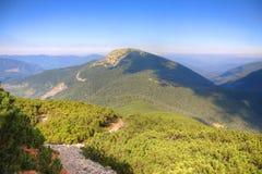 Via in montagne Immagine Stock