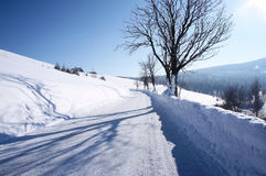 Via nell'inverno Immagine Stock Libera da Diritti
