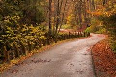 Via nella foresta di autunno Fotografia Stock Libera da Diritti