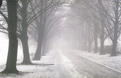 Via nella nebbia Immagini Stock