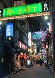 Via posteriore Tokyo Giappone di vita di notte Immagine Stock Libera da Diritti