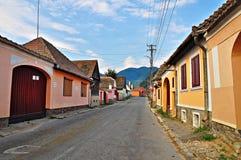 Via principale del villaggio di Gura Raului Fotografie Stock