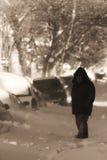 Via sotto neve Fotografie Stock Libere da Diritti