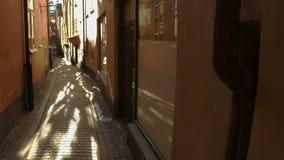 Via stretta antica a Stoccolma centrale Vecchia città video d archivio