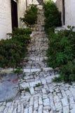 Via stretta della pietra del ciottolo in vecchia città Berat, Albania Immagine Stock