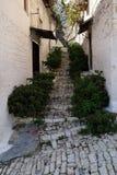 Via stretta della pietra del ciottolo in vecchia città Berat, Albania Fotografie Stock Libere da Diritti