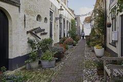 Via stretta Westerwalstraat in Elburg fortificato Fotografie Stock