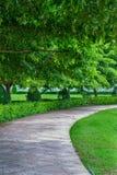Via su verde Fotografia Stock