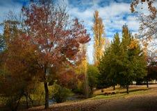 Via suburbana con le foglie di autunno Fotografie Stock