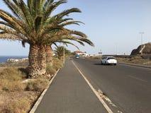Via Sunny Ocean Road della palma fotografia stock libera da diritti