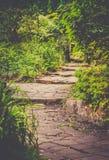 Via in un parco Fotografia Stock