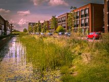 Via urbana amichevole di Eco con la sponda del fiume naturale Immagine Stock Libera da Diritti