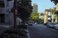 Via verde del centro urbano con le piantagioni e gli alberi Immagini Stock