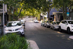 Via verde del centro urbano con le piantagioni e gli alberi Fotografia Stock Libera da Diritti