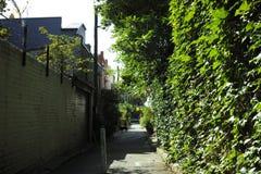 Via verde del centro urbano con le piante ed i fiori Fotografia Stock