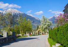 Via in villaggio alpino con gli alberi del fiore Fotografia Stock Libera da Diritti