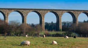 Viaduct Foto de Stock