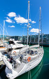 Viaduct Harbour ,Auckland Royalty Free Stock Image