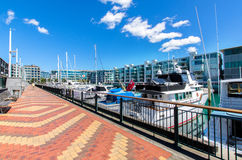 Viaduct Harbour ,Auckland Royalty Free Stock Photos