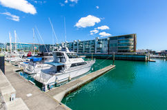 Viaduct Harbour in Auckland,New Zealand Royalty Free Stock Photo