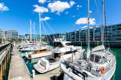 Viaduct Harbour in Auckland,New Zealand Royalty Free Stock Image