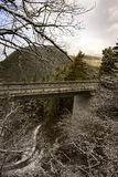Viaduct through mountainous terrain. Viaduct or bridge through mountainous terrain with snow covered trees and mountain peaks Stock Photography