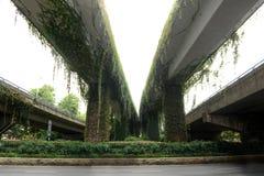 Viaduct-Nature and modern civilization Stock Photo