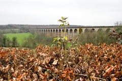 Viaducto de Harrogate en Yorkshire Foto de archivo libre de regalías
