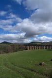 Viaducto de Leaderfoot, fronteras, Escocia Fotografía de archivo libre de regalías
