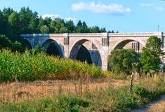 Viadukt im Wald, Viaduktbahnviadukt, Viadukt mit gewölbten Spannen Stockfotos