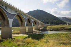 Viadukt Poiana Teiului Royaltyfria Bilder