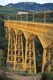 Viaduto de Malleco, o Chile imagem de stock royalty free