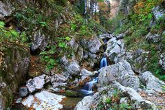Viagem às cachoeiras de Mendelikh, floresta profunda fotos de stock